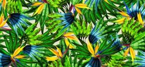 Lenny Niemeyer é escolhida para criar os uniformes do Brasil nos Jogos Olímpicos doRio